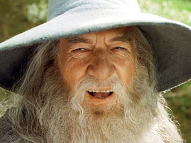 One Wise Wizard
