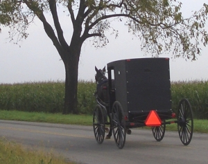 old-order-mennonite-buggy-pa