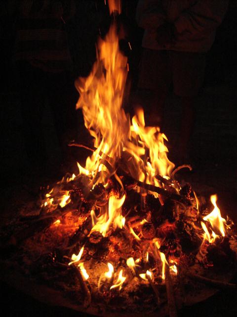 Campfire_Pinecone