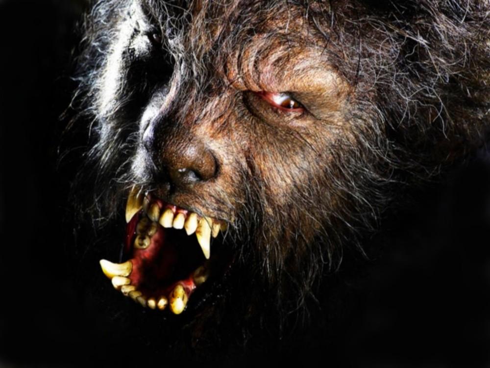 dark-werewolf_00223696